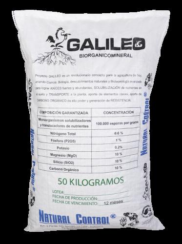 galileo-03 (1)