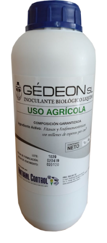 gedeon producto